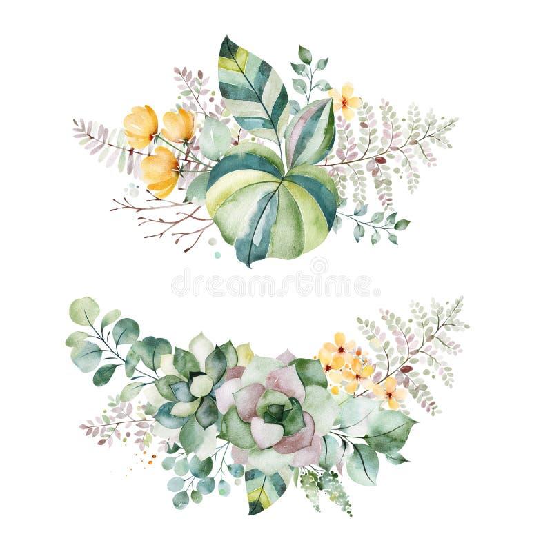 2 ramalhetes bonitos com plantas carnudas, folhas de palmeira, ramos, as flores amarelas e o mais ilustração do vetor
