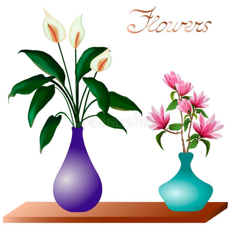 Ramalhetes das flores em uns vasos em um fundo branco ilustração do vetor