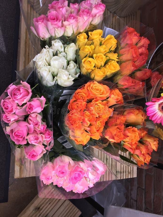 Ramalhetes das rosas fotos de stock