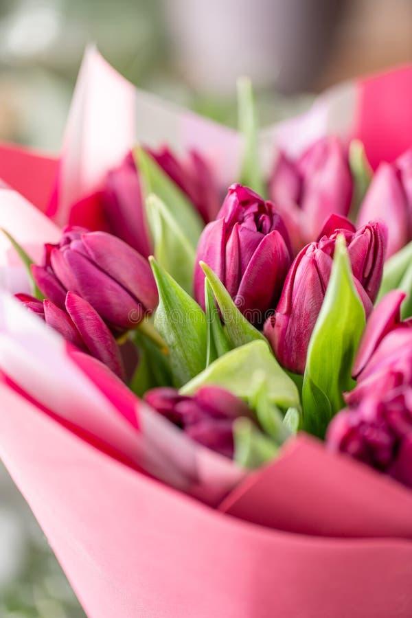 Ramalhetes das tulipas violetas Flores da mola do jardineiro holandês Conceito de um florista em um florista wallpaper foto de stock