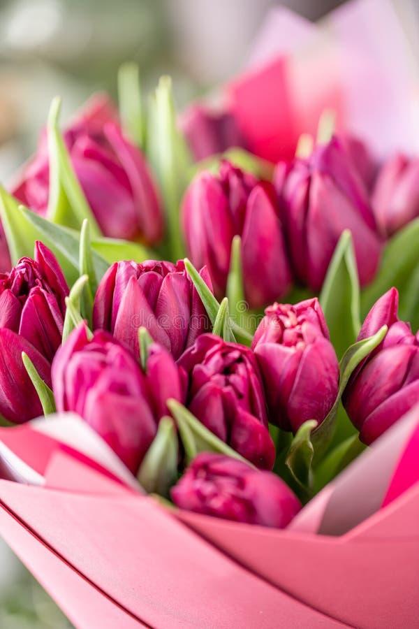Ramalhetes das tulipas violetas Flores da mola do jardineiro holandês Conceito de um florista em um florista wallpaper fotografia de stock