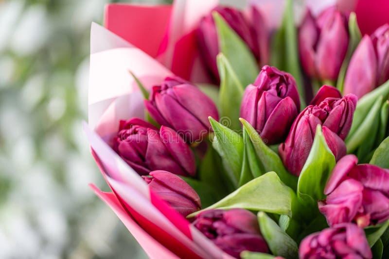 Ramalhetes das tulipas violetas Flores da mola do jardineiro holandês Conceito de um florista em um florista wallpaper fotos de stock