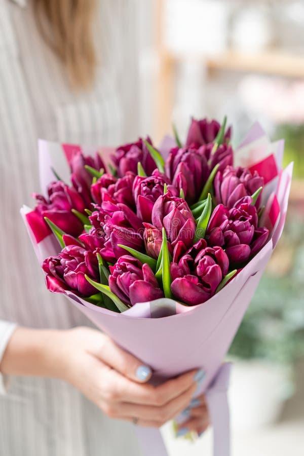 Ramalhetes das tulipas violetas Flores da mola do jardineiro holandês Conceito de um florista em um florista wallpaper imagens de stock royalty free