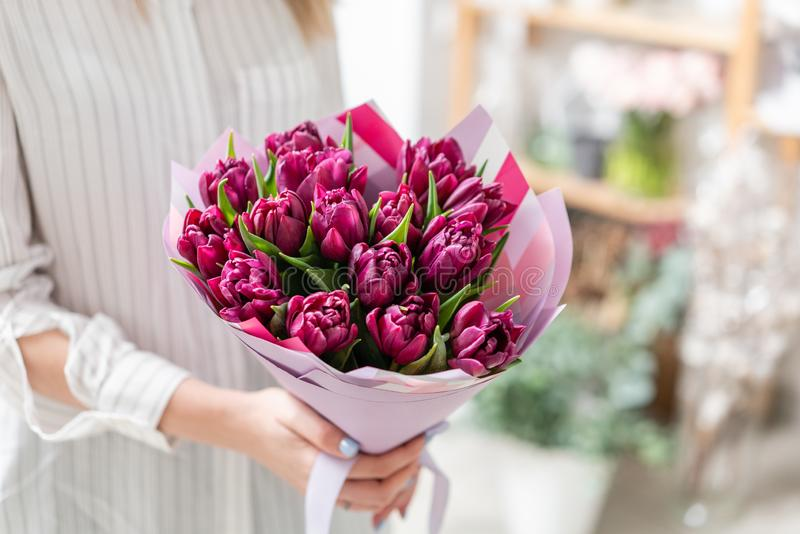Ramalhetes das tulipas violetas Flores da mola do jardineiro holandês Conceito de um florista em um florista wallpaper imagem de stock