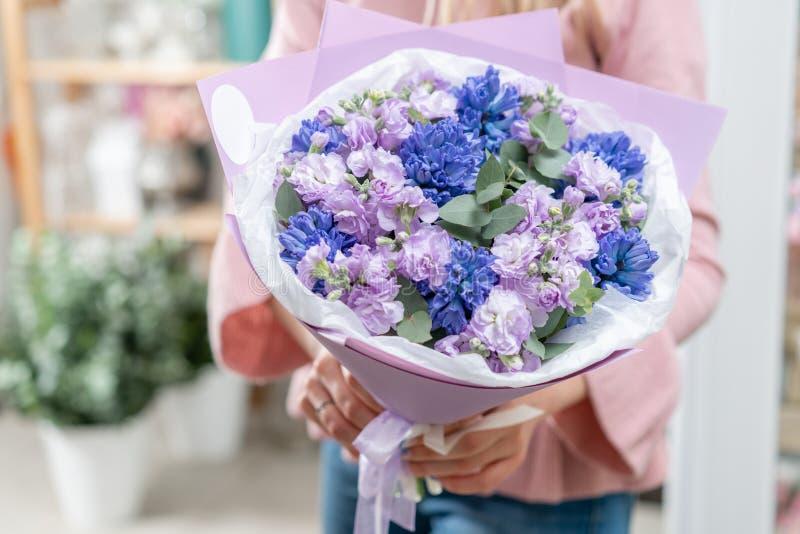 Ramalhetes de jacintos azuis e matthiola da cor lilás na mão da mulher Flores da mola do jardineiro holandês Conceito da imagem de stock royalty free