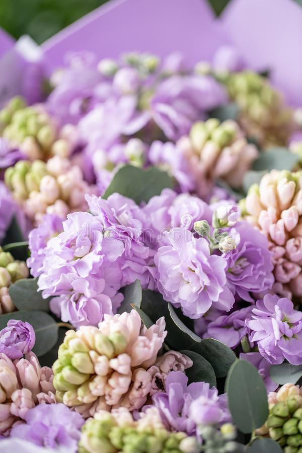 Ramalhetes de jacintos cor-de-rosa e matthiola da cor lilás no vaso na tabela de madeira Flores da mola do jardineiro holandês imagem de stock