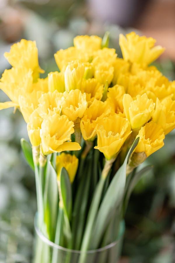 Ramalhetes de narcisos amarelos amarelos Flores da mola do jardineiro holandês Conceito de um florista em um florista wallpaper fotografia de stock royalty free
