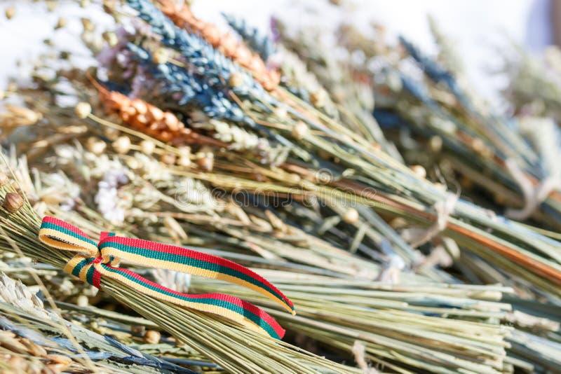 Ramalhetes tradicionais do trigo do cereal, do linho, da grama do campo e de sementes maduros Fita lituana das cores da bandeira  imagens de stock