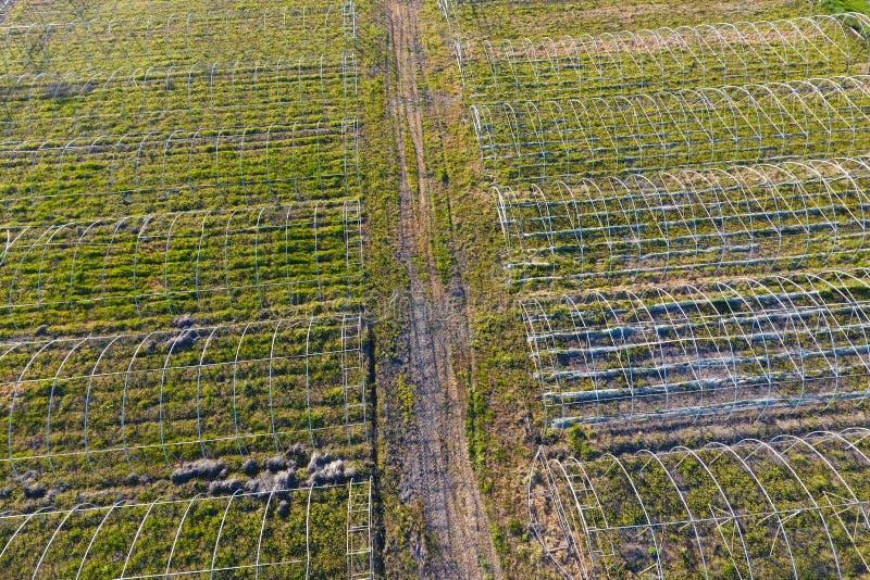 Ramar av v?xthus Konstruktion av v?xthus i f?ltet Jordbruk agrotechnics av st?ngd jordning arkivfoto