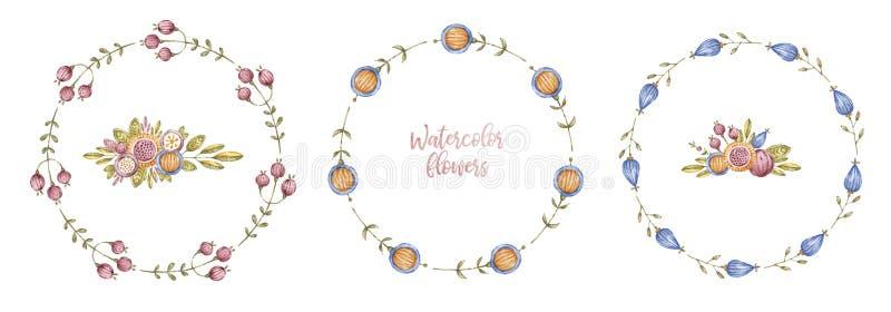Ramar för cirkelakvarellblomma, ramuppsättning vektor illustrationer