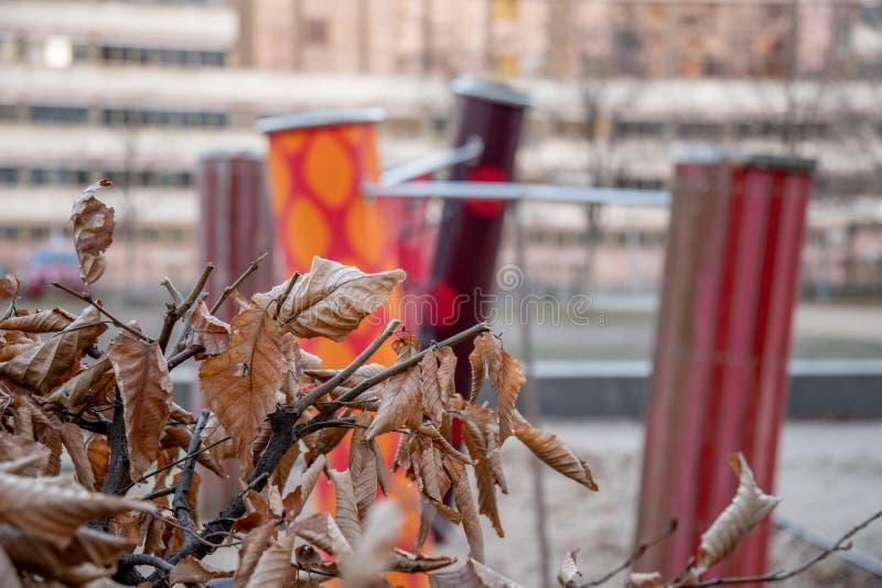 Ramas de árbol con las hojas marrones secas en el fondo borroso de formas geométricas coloridas y de rayas imágenes de archivo libres de regalías