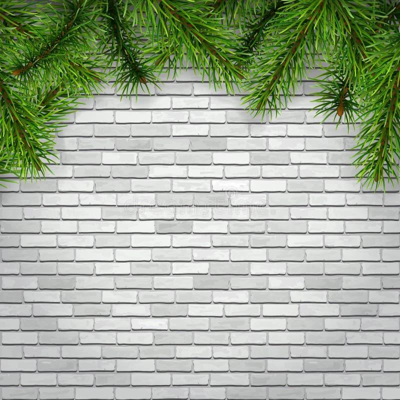 Ramas de árbol de abeto en un fondo blanco de la pared de ladrillo ilustración del vector