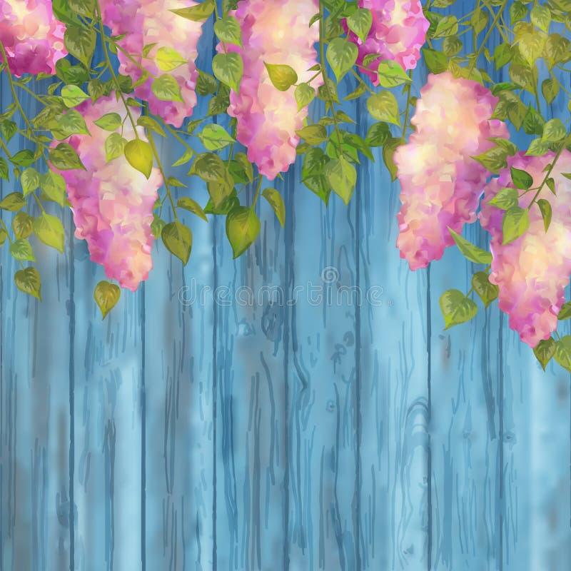 Ramas de la lila del vector stock de ilustración