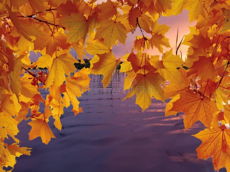 Ramas del arce con las hojas coloridas en el fondo del agua lisa del lago por la tarde del otoño en la puesta del sol imagen de archivo libre de regalías