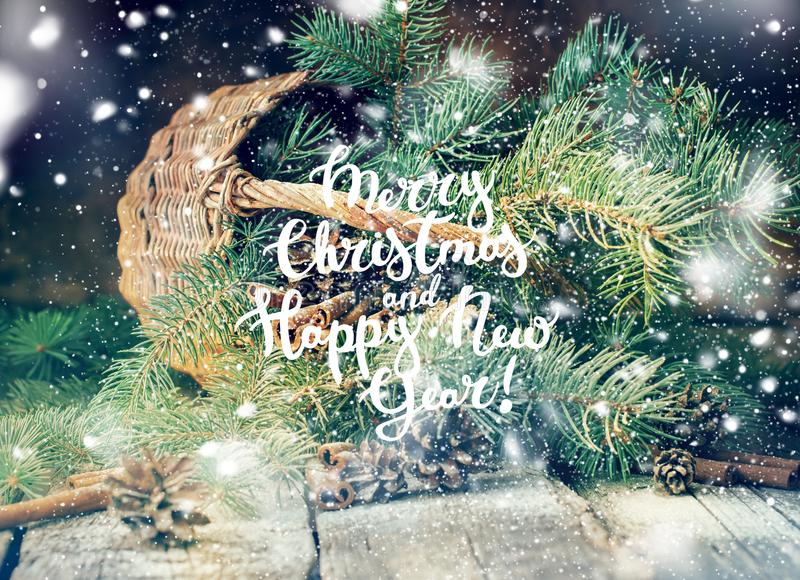 Ramas del azul de la Feliz Año Nuevo de la Feliz Navidad del texto imagen de archivo libre de regalías