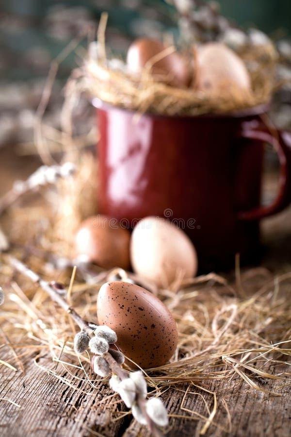Ramas del sauce y huevos de codornices en un fondo de madera fotografía de archivo