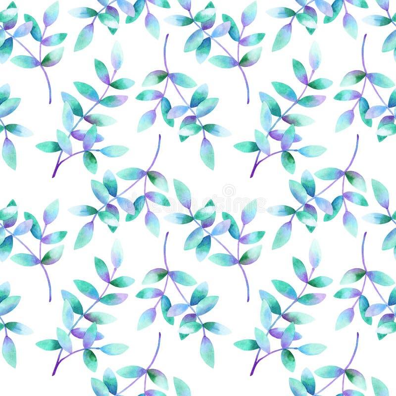 Ramas hermosas con las hojas azules púrpuras verdes Modelo incons?til Ejemplo dibujado mano de la acuarela r stock de ilustración