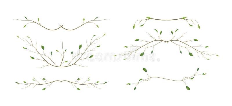 Ramas naturales de diverso follaje del arte del diseñador de la ramita de la rama de árbol, estilo s de la acuarela de los elemen stock de ilustración