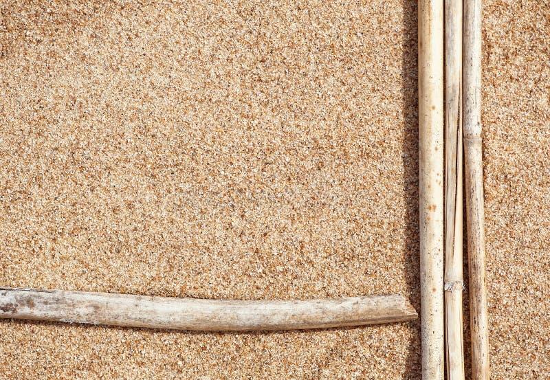 Ramas secas en la arena fotografía de archivo libre de regalías