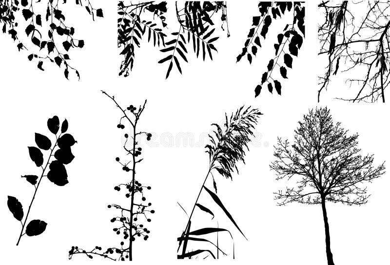 Ramassage de clipart de vecteur d'arbres et de buissons illustration de vecteur