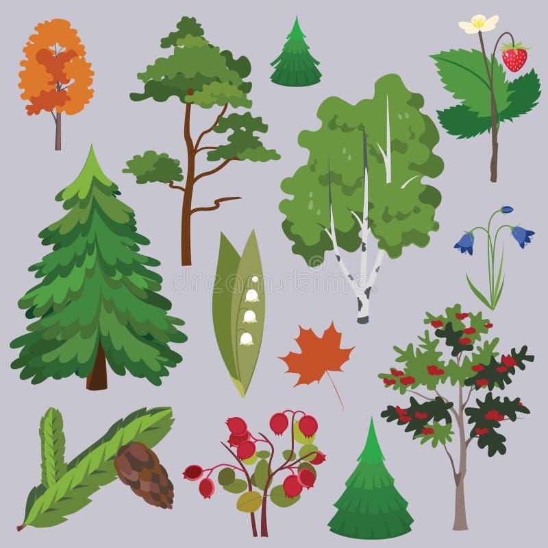 Ramassage de forêt de vecteur illustration libre de droits