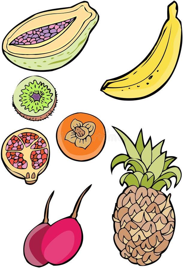 Ramassage de fruit illustration stock