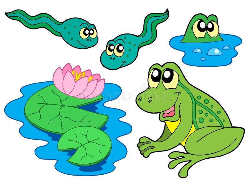 Ramassage de grenouille illustration libre de droits