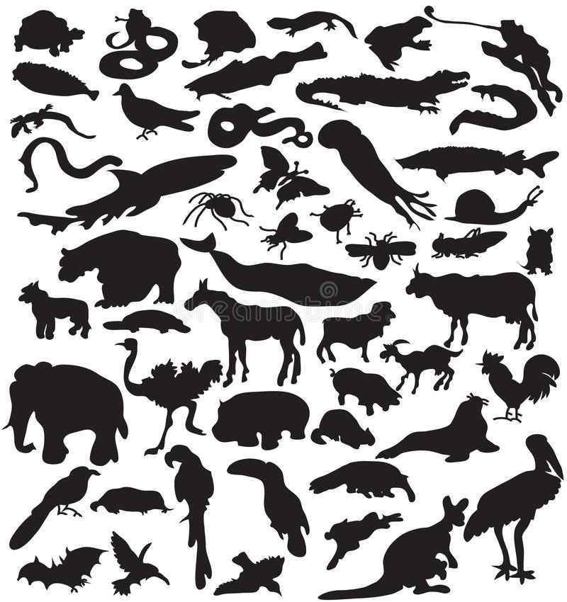 Ramassage de silhouettes d'animaux. illustration stock