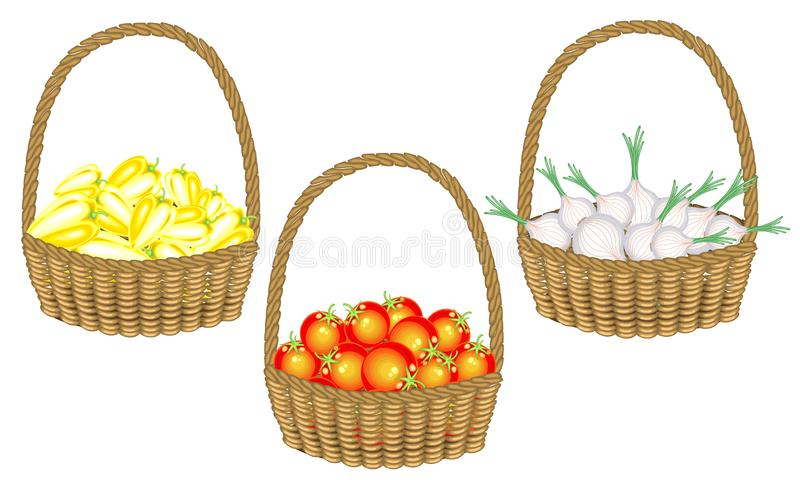 ramassage Soran est une récolte riche en beaux poivrons frais d'un panier en osier, oignons, tomates Les légumes sont nécessaires illustration stock