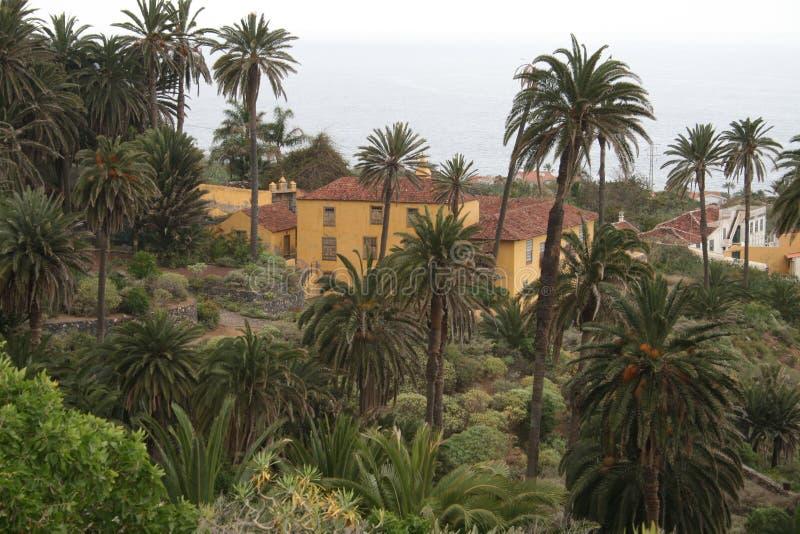 Rambla de Castro, Tenerife fotografia de stock