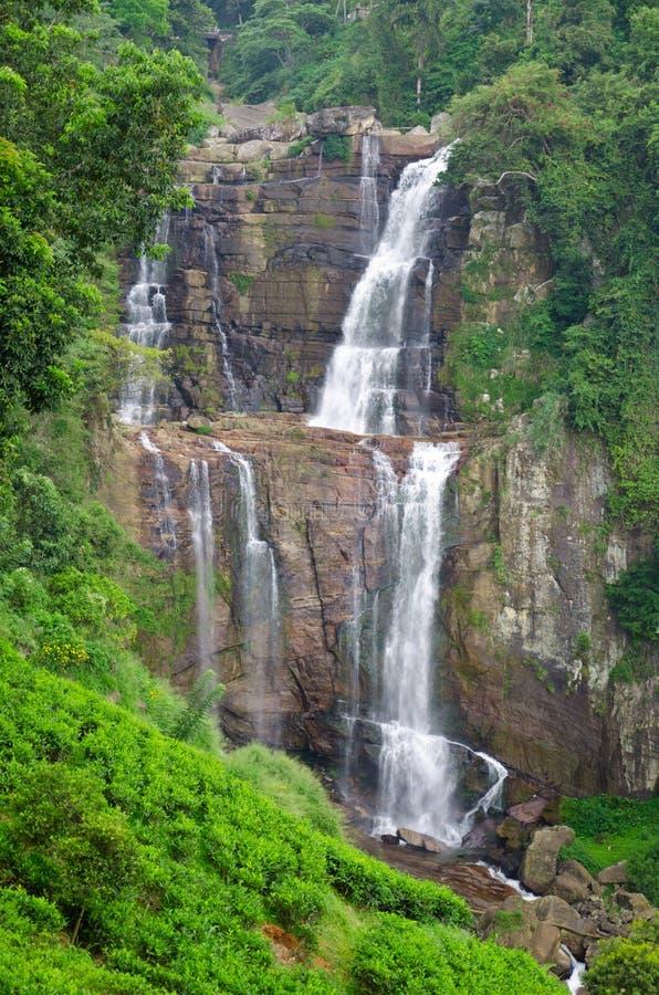 Ramboda Falls Stock Photos