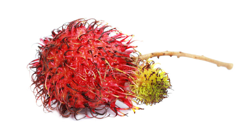 Ramboutan, oeil de dragon - fruit tropical photos stock