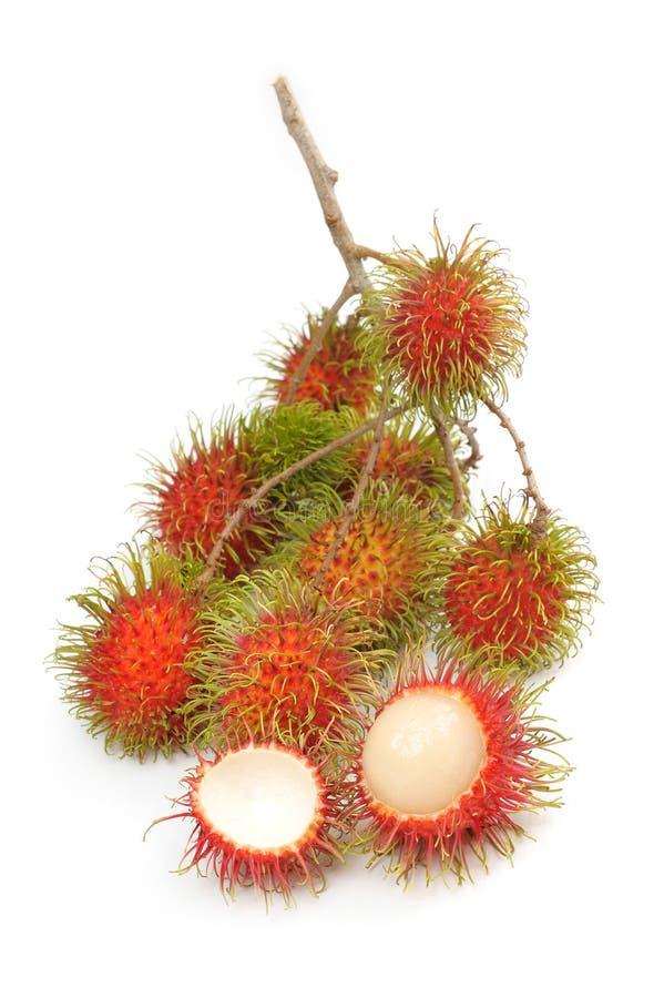 Rambutan. Tropical fruit - fresh Malaysian hairy rambutan stock photos