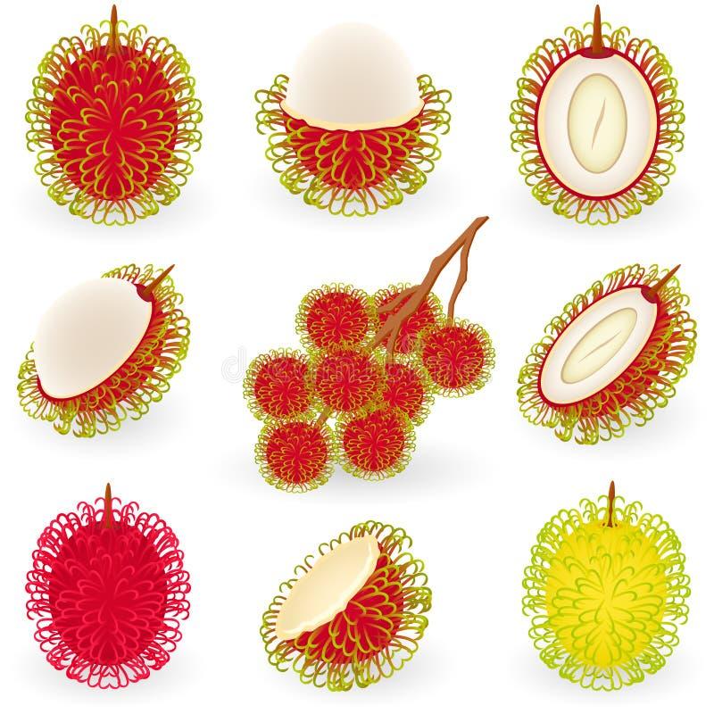 Free Rambutan Stock Photos - 12668953