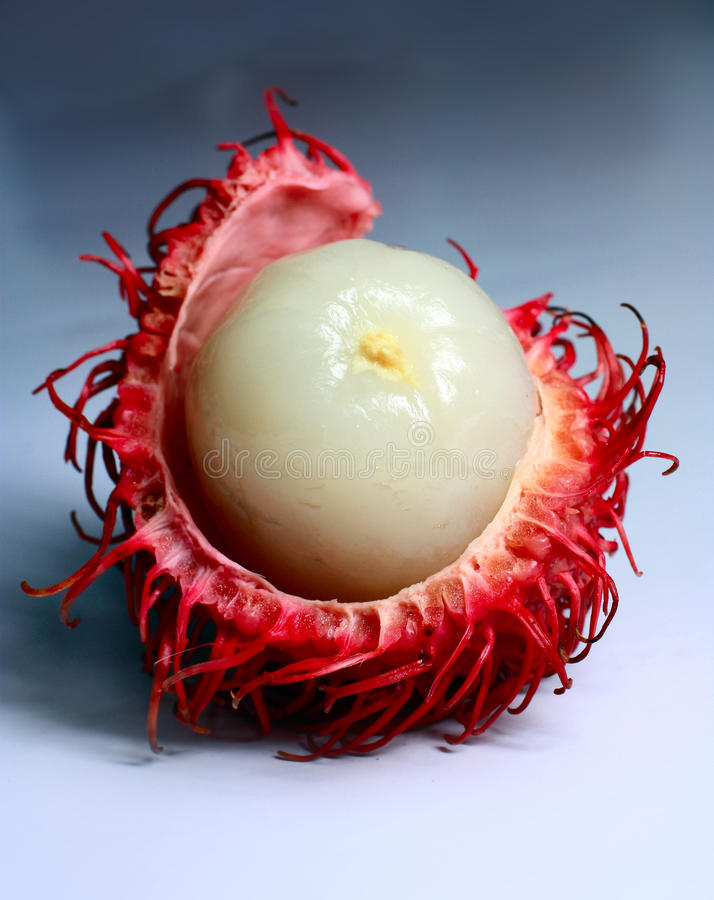 Rambutan. Is a kind of tropical fruit stock images