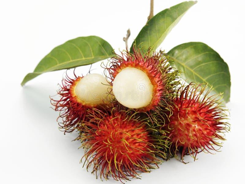 Rambutan. Asian fruit rambutan on the plain background stock photos