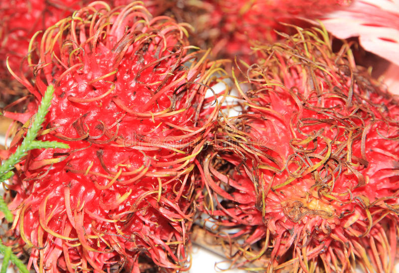 Rambutan stock afbeeldingen