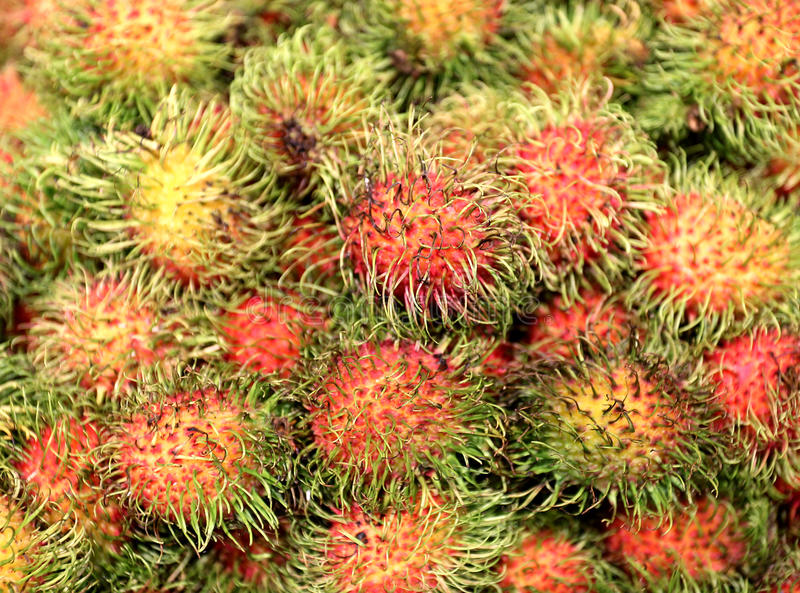 Rambutan delicioso do fruto tropical foto de stock royalty free
