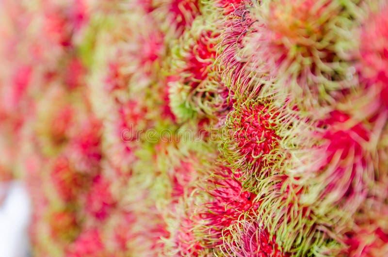 Download Rambutan fresco foto de archivo. Imagen de arbusto, fresco - 41905360