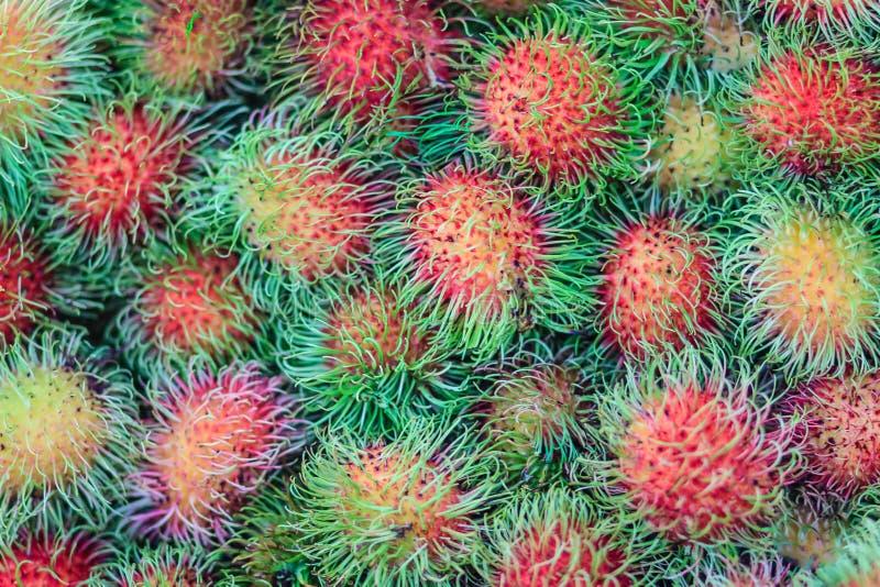 Rambutan fresco organico da vendere al mercato di frutta Rambutan (N fotografia stock libera da diritti