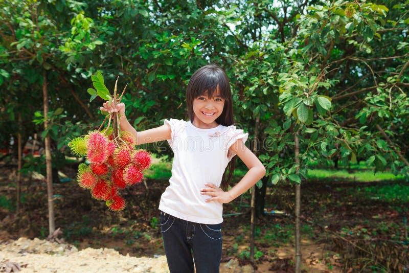 Rambutan fruit. Smiling little girl with Rambutan fruit in her hand and rambutan tree background royalty free stock photo