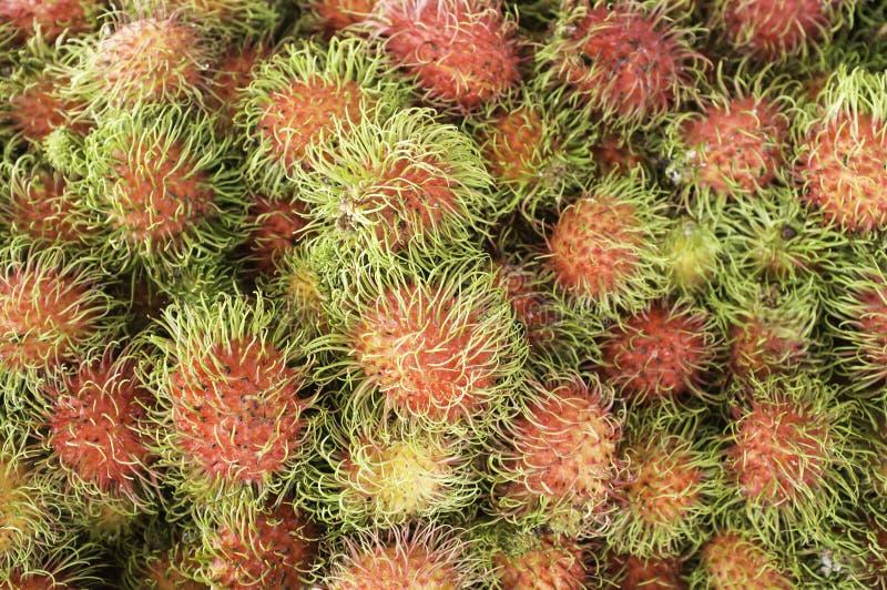 Rambutan stock photos