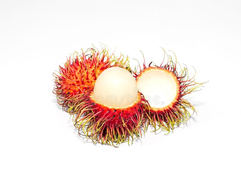 Rambutan fruit on trunk in the gardensweet delicious fruit isolated on white background. stock images