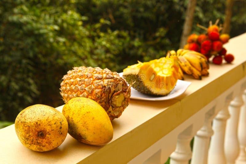 Rambutan fruit van de de mangohefboom van de pijnboomappel het gele royalty-vrije stock afbeelding