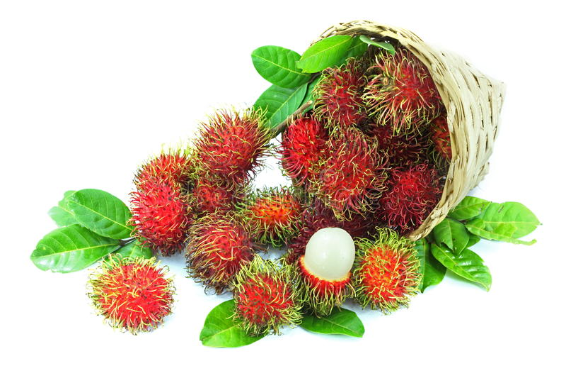 Rambutan fruits. In basket on white background stock photos