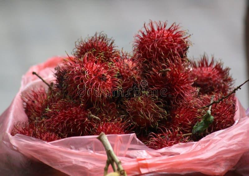 Rambutan stock photography