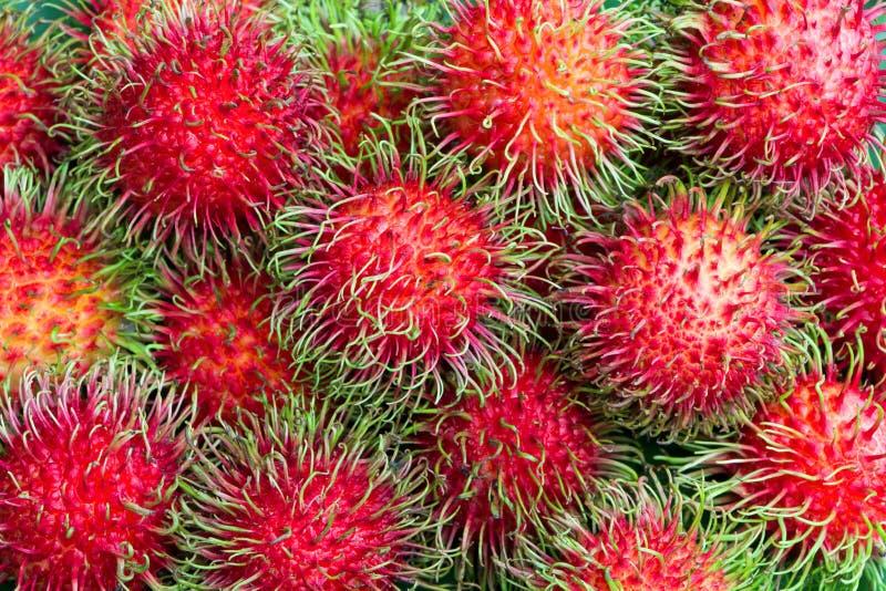 Rambutan fruits royalty free stock photo