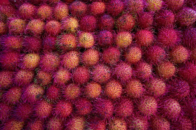 Rambutan mexicano empilhado nos raws foto de stock royalty free