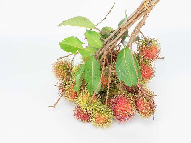 Rambutan , red hairy skin sweet. And delicious fruit. tear incomplete leaves and small branch on white background, thai famous tropical fruit royalty free stock photos