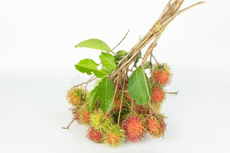 Rambutan , red hairy skin sweet. And delicious fruit. tear incomplete leaves and small branch on white background, thai famous tropical fruit stock photos
